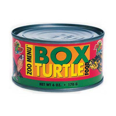 Boxed Turtle